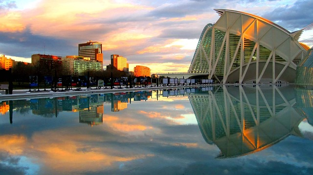 The best tours of the historical center and the City of Arts and Sciences.