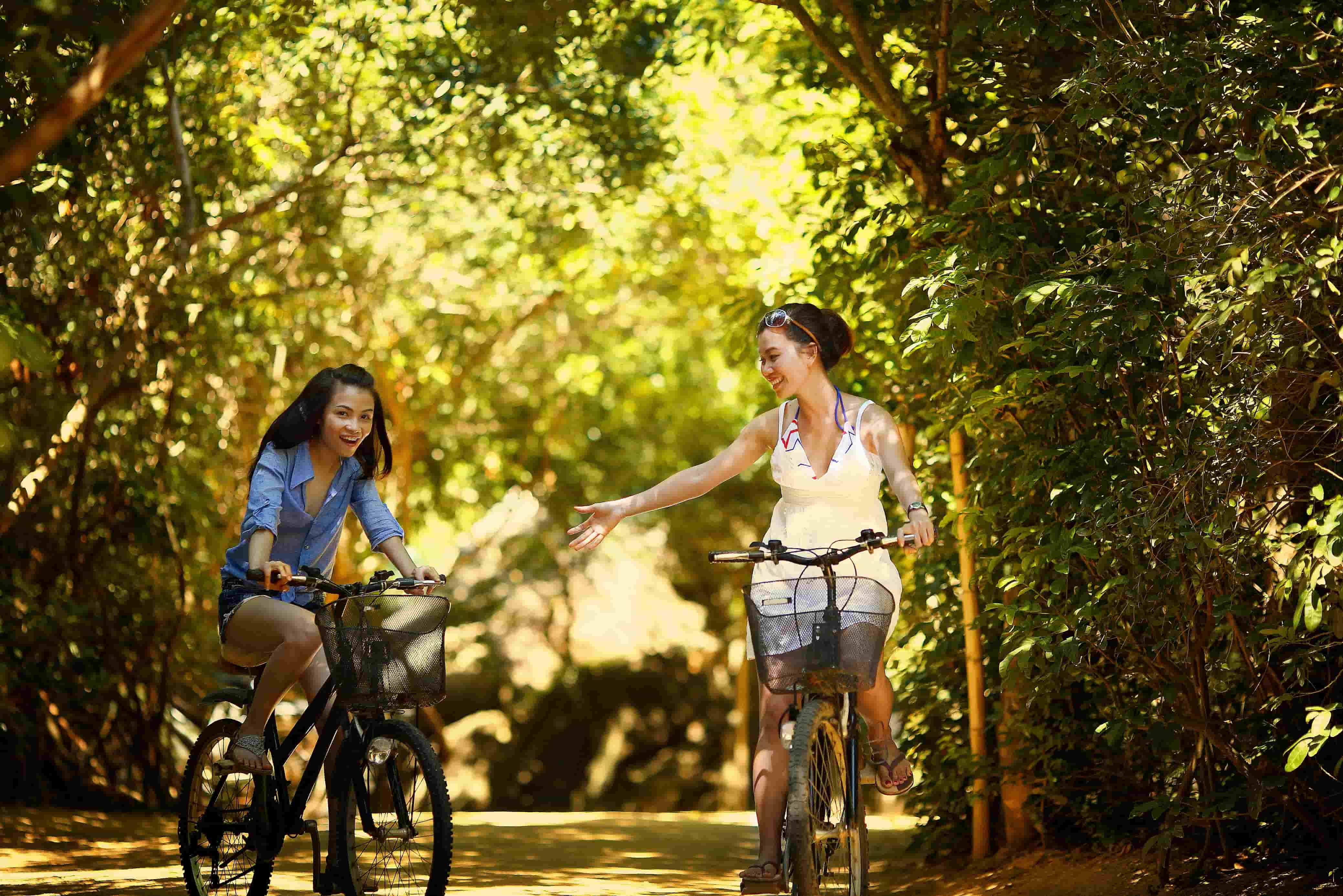 Bike tour y Segway, the best tourist guides and routes of Valencia.