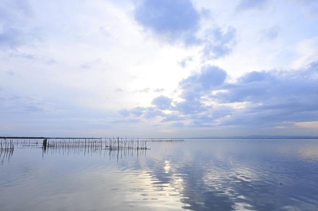 Visita l'Albufera, il lago più importante di Spagna.