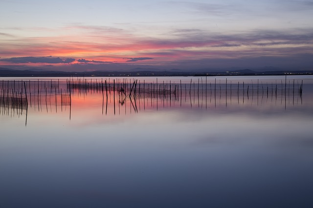 Albufera Tour. the best visits of Valencia.